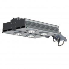 Уличный светодиодный светильник CLS-DUET-300-ХХХХ-67